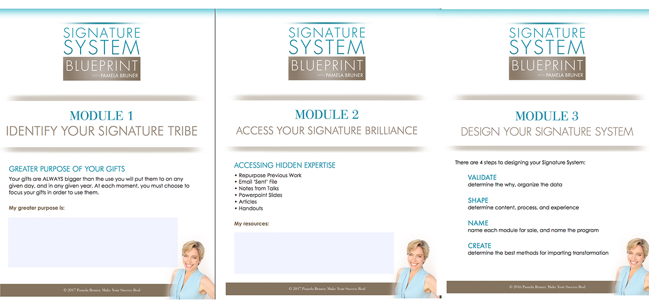 The signature system blueprint the signature system blueprint youll get a handout and worksheets so you can go through all of the essential elements of the signature system creation process step by step malvernweather Image collections